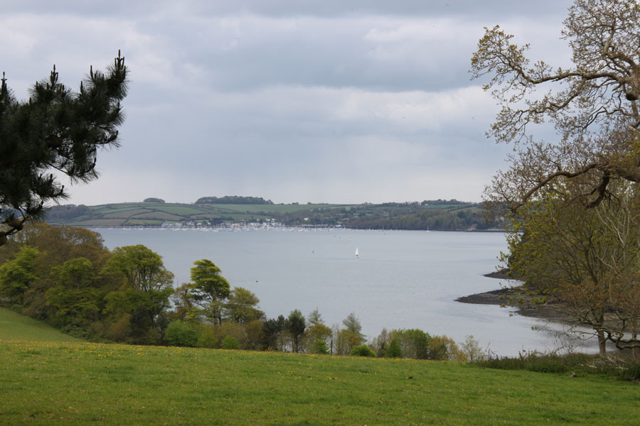 Photo of a view of Carrick Roads from Trelissick Garden, Cornwall (IMG_0650a.jpg)